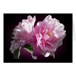 Cartão do noivado dos rosas do verão