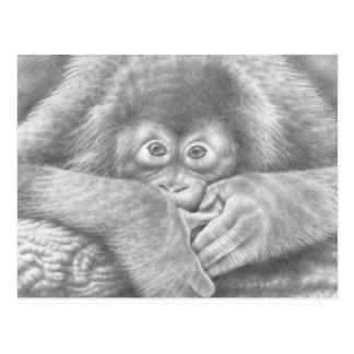 Cartão do orangotango do bebê