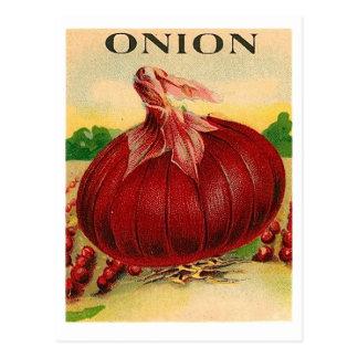 cartão do pacote da semente da cebola vermelha do