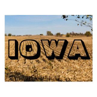 Cartão do panorama do campo de milho de IOWA Iowa