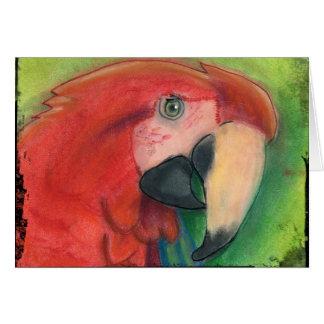 Cartão do papagaio