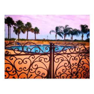Cartão do paraíso da palmeira