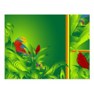 Cartão do paraíso de O do pássaro