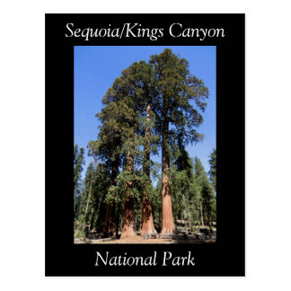 Cartão do parque nacional dos reis Garganta da