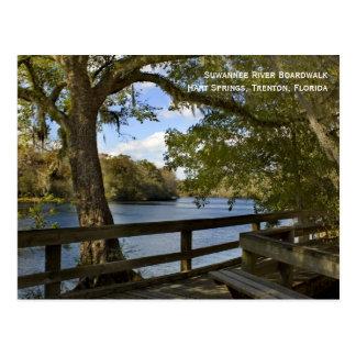 Cartão do passeio à beira mar do rio de Suwannee