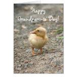 Cartão do patinho do dia das avós felizes
