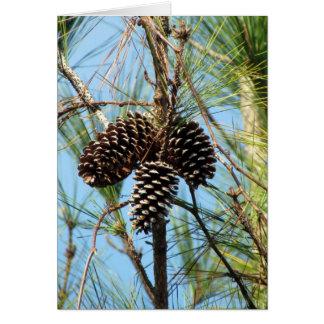 Cartão do pinheiro