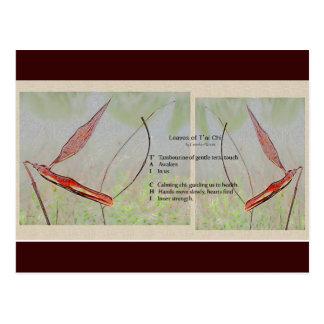 Cartão do poema do qui da TAI