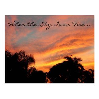 Cartão do por do sol de Florida/quando o céu