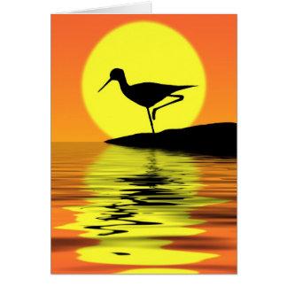 Cartão do por do sol do flamingo