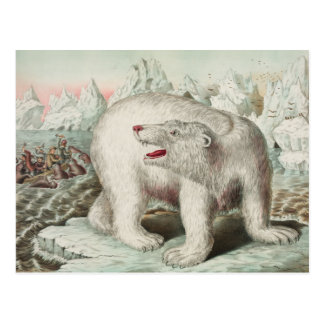 Cartão do poster do urso polar