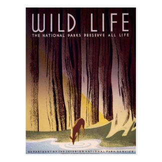Cartão do poster dos parques nacionais de WPA