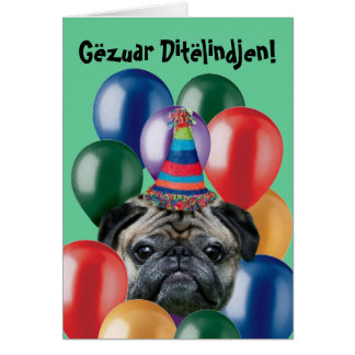 Cartão do pug do aniversário de Gëzuar Ditëlindjen
