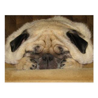 Cartão do Pug do sono