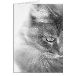 """Cartão Do """"retrato do gatinho anjo"""""""