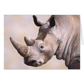 Cartão do rinoceronte