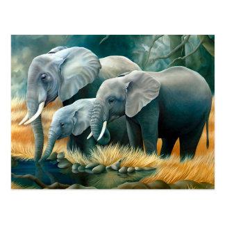 Cartão do safari da família do elefante