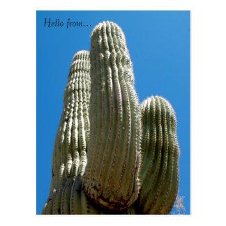 Cartão do Saguaro