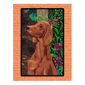 Cartão do setter do jardim