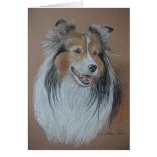Cartão do Sheepdog de Shetland