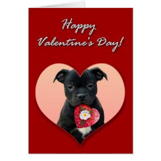 Cartão do Staffordshire bull terrier dos namorados