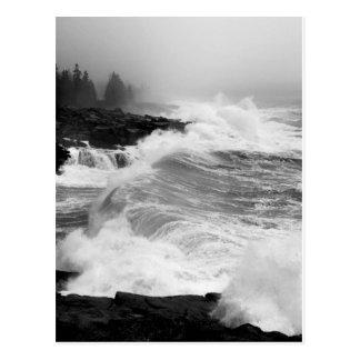 Cartão do surf do Acadia - 3