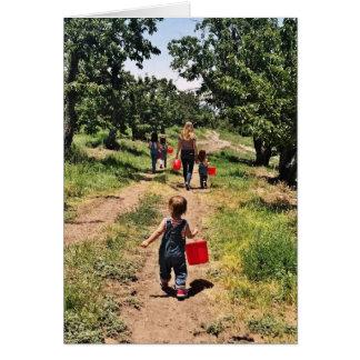 Cartão do tempo da colheita de cereja