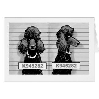 Cartão do tiro de caneca do cão