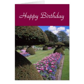 cartão do Toadstool-topiary