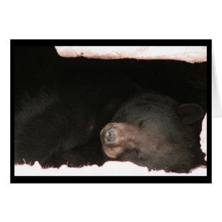 Cartão do urso preto do sono