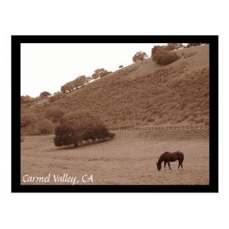 Cartão do vale de Carmel
