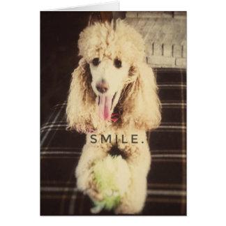 Cartão do vazio da caniche do sorriso