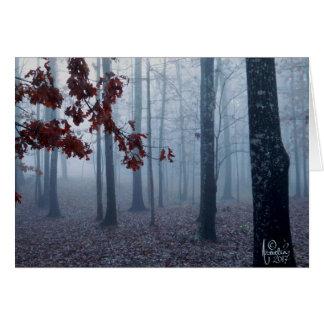 Cartão do vazio da névoa de fevereiro