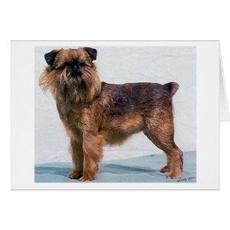 Cartão do vazio do retrato do cão de Bruxelas