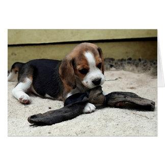 Cartão do vazio do retrato do filhote de cachorro