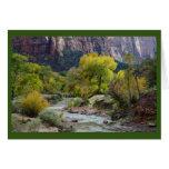 Cartão do vazio do rio, da floresta & do parque