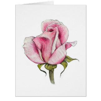 Cartão do vazio do rosa da aguarela