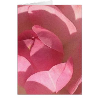 Cartão do vazio do rosa do rosa