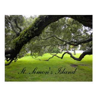Cartão do viagem da ilha de St Simon