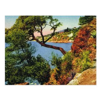 Cartão do vintage da réplica, Toulon, boné Brun