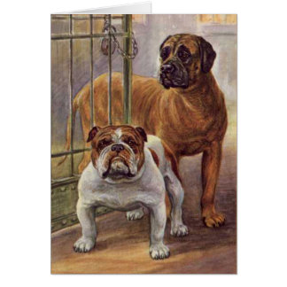 Cartão do vintage do buldogue e do Mastiff