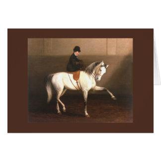 Cartão do vintage do cavalo