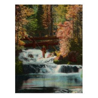 Cartão do vintage do pescador de Black Hills