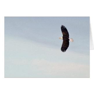 Cartão do vôo da águia americana