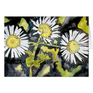 cartão do wildflower do áster de charneca