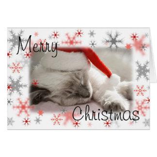Cartão do xmas do gatinho do papai noel