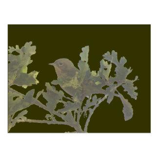 Cartão do Yellowthroat comum
