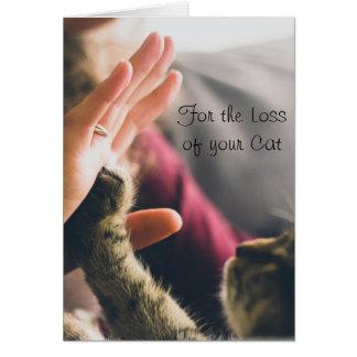 Cartão Doação da pata do gato Alta-cinco