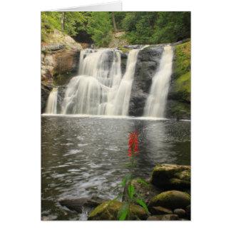 Cartão Doanes cai cachoeira e flor cardinal