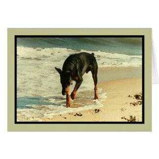 Cartão Doberman na imagem da pintura da praia